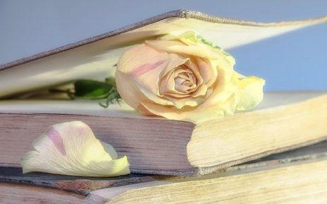 सपने में पुस्तक खोना