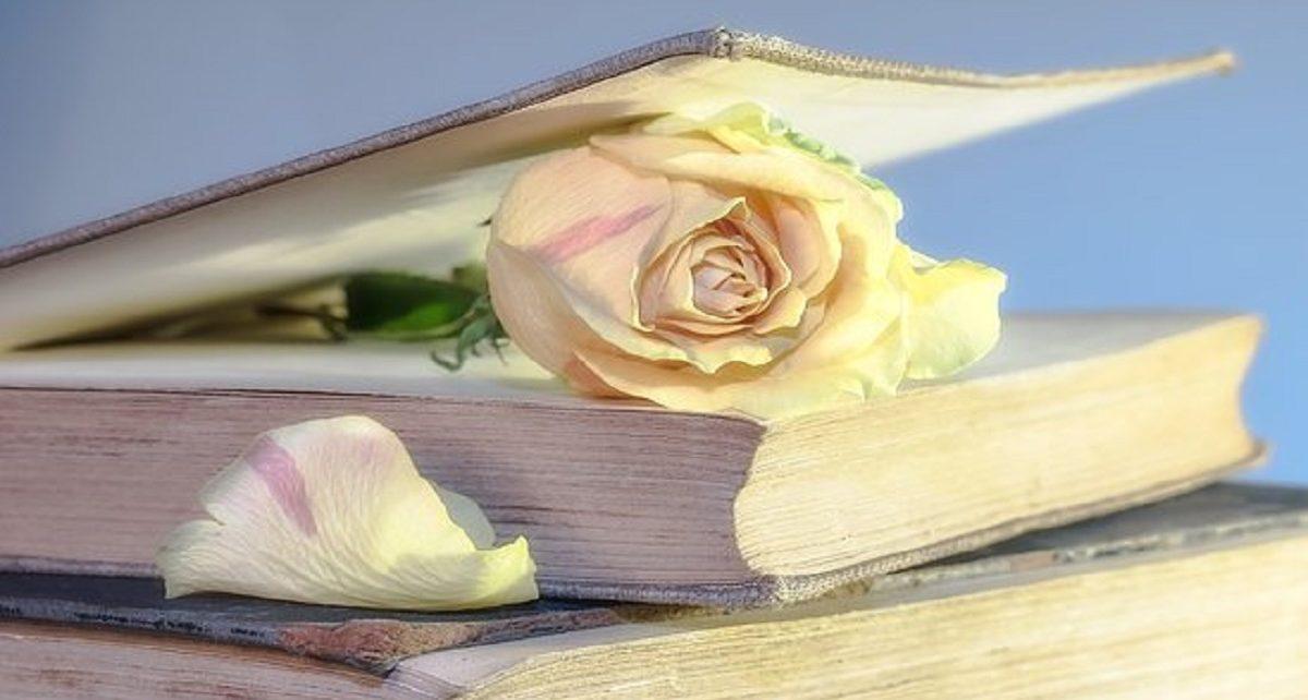 सपने में पुस्तक मिलना