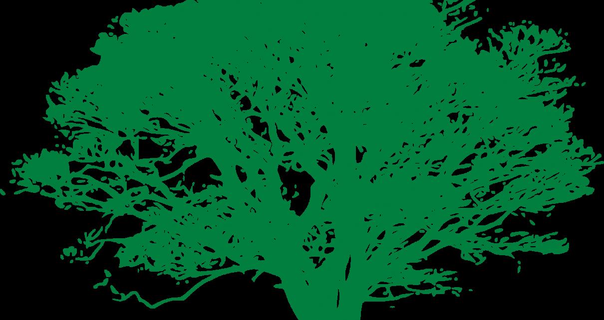 सपने में पीपल का पेड़ दिखाई देना